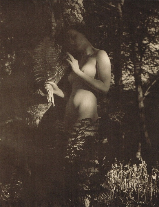 John Everard -Study of Nude (Nude Lady Forest Trees)photogravure 1940 1