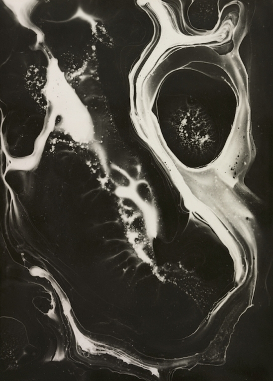 Marcel G. Lefrancq -L'objectivité scientifique , 1948