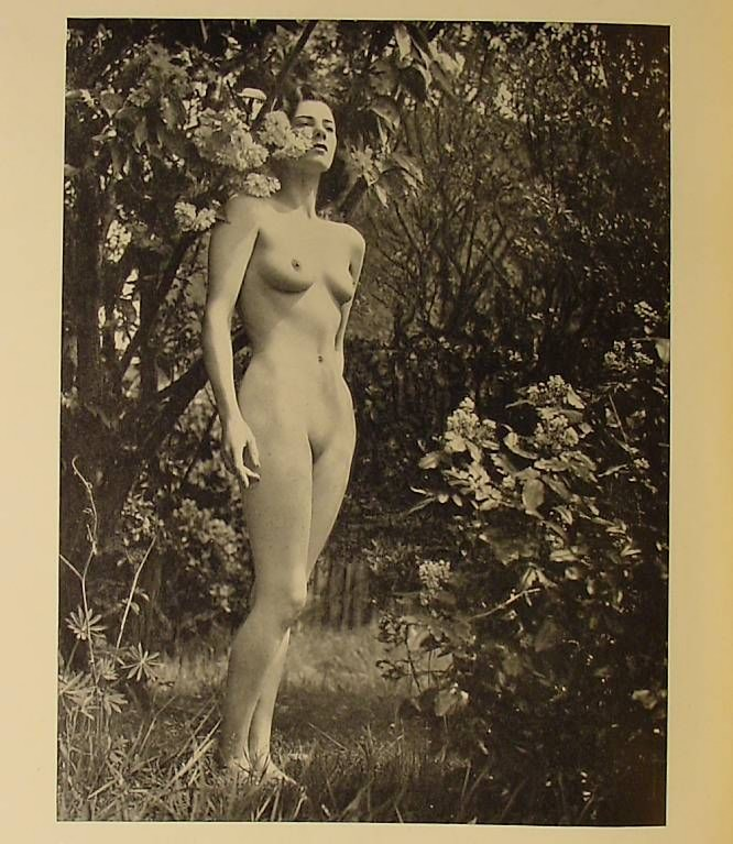 Horace Roye- Nude from the bookThe Irish Maid, (15)