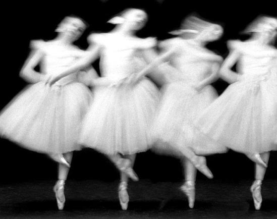 Paul Himmel- Swan Laked -1951-52