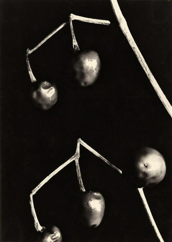 Aenne Biermann - Round peppers, 1928.