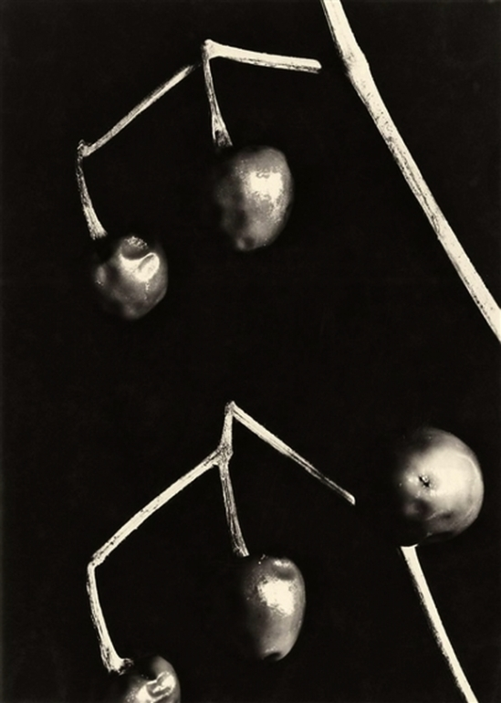 Aenne Biermann - Round peppers, 1928.