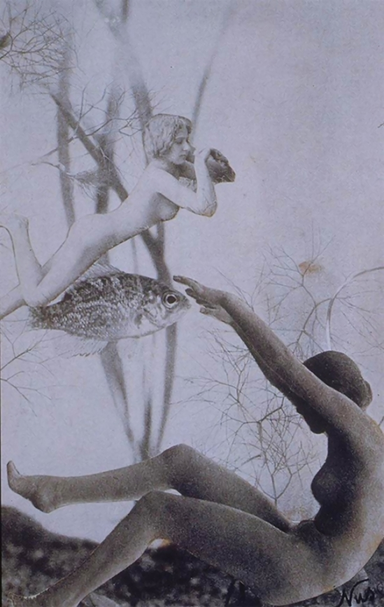 Nusch Eluard- Bois des Iles, Precious woods, Photo-collage c. 1937 Collection of Timothy Baum, New York.