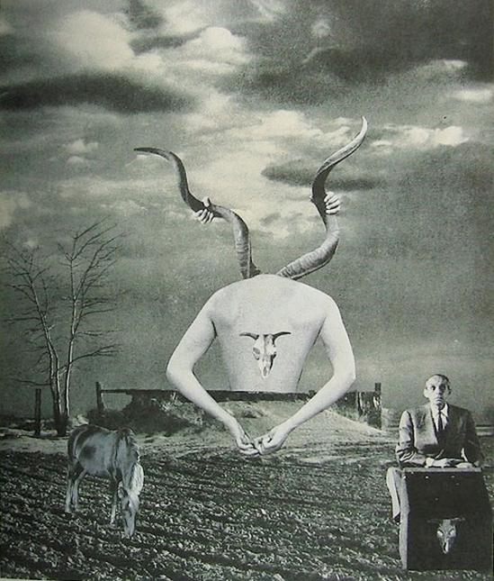 Okanoue Toshiko -Supraspinatus Yoshiko & Twilight , 1956, Drop of Dreams Nazraeli Press 2002