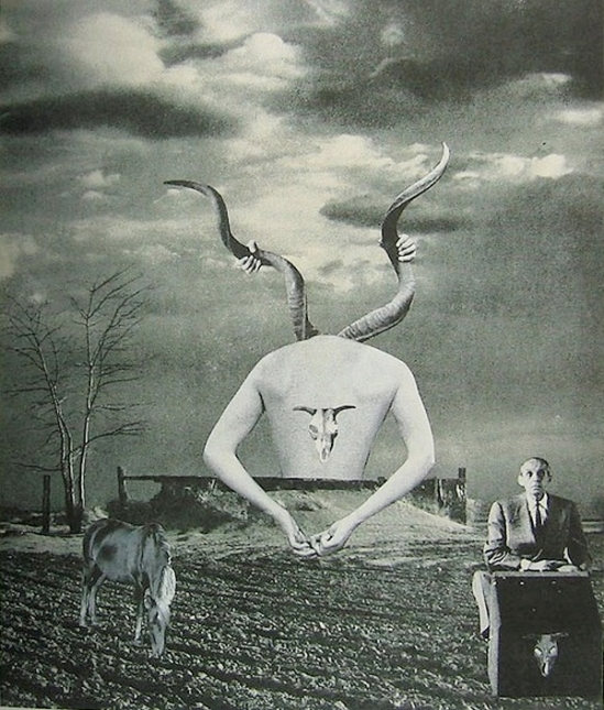 Okanoue Toshiko -Supraspinatus Yoshiko & Twilight , 1956, Drop of Dreams Nazraeli Press 2002
