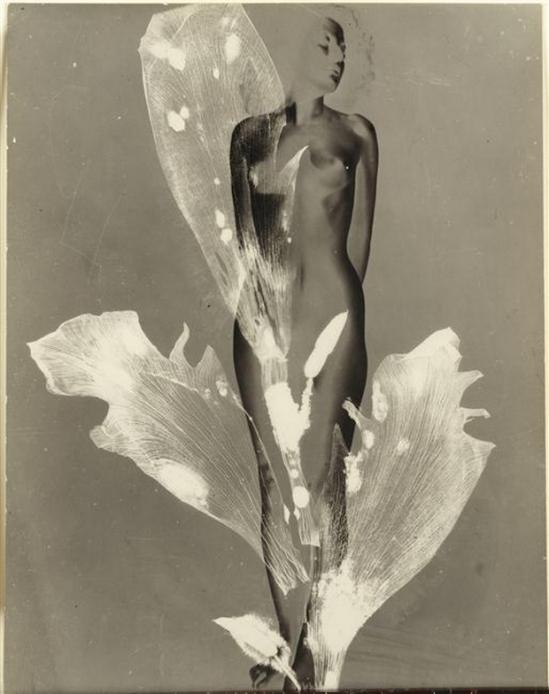 Pierre Boucher- nu solarisé (Femme Fleur) Les Fantasmagories du Nu, N° 5, 1935