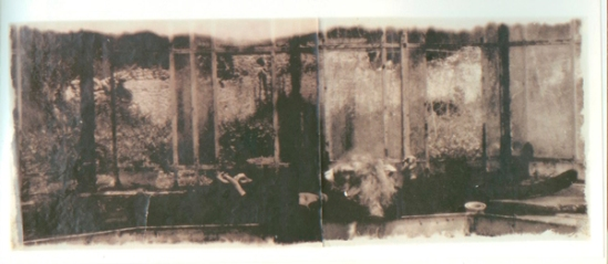 Deborah Turbeville, Steam Bath Series, Tanya, New York, 1984