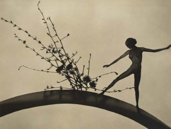 František Drtikol- Cut-out nudes with grass, flowers, trees, and leaves,1930-1935