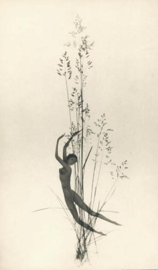 František Drtikol Untitled (cut-out nude with grass) c.1930-1935