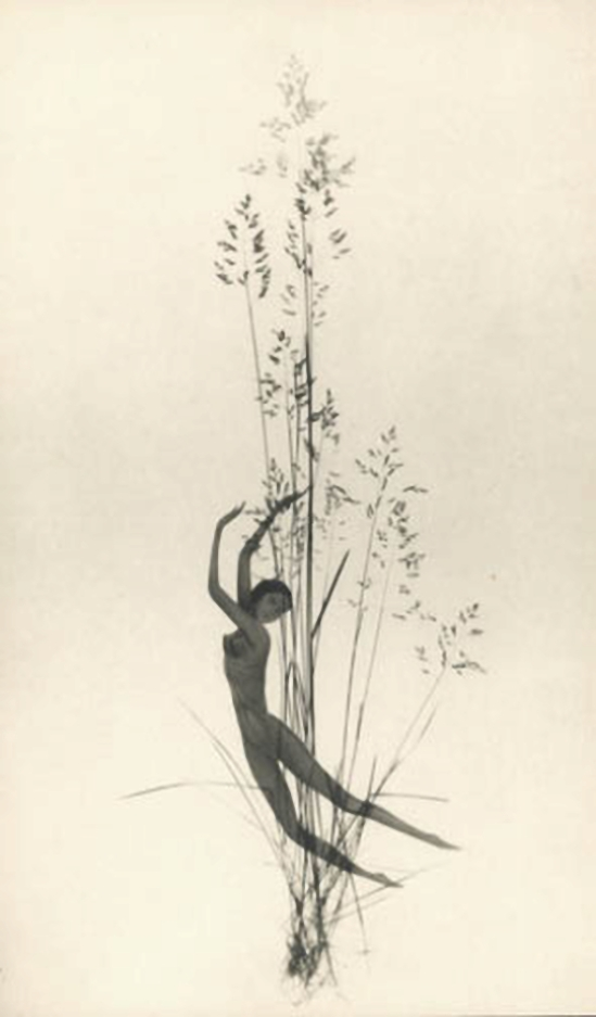 František Drtikol Untitled (cut-out nude with grass) c.1930-1935