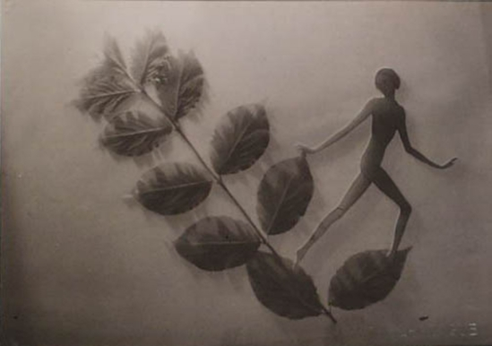 František Drtikol Untitled (cut-out nude with leaves) ,1930-1935