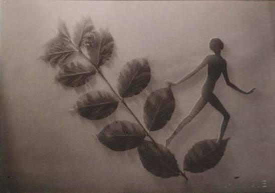 František Drtikol Untitled (cut-out nude with leaves) ,1930-1935