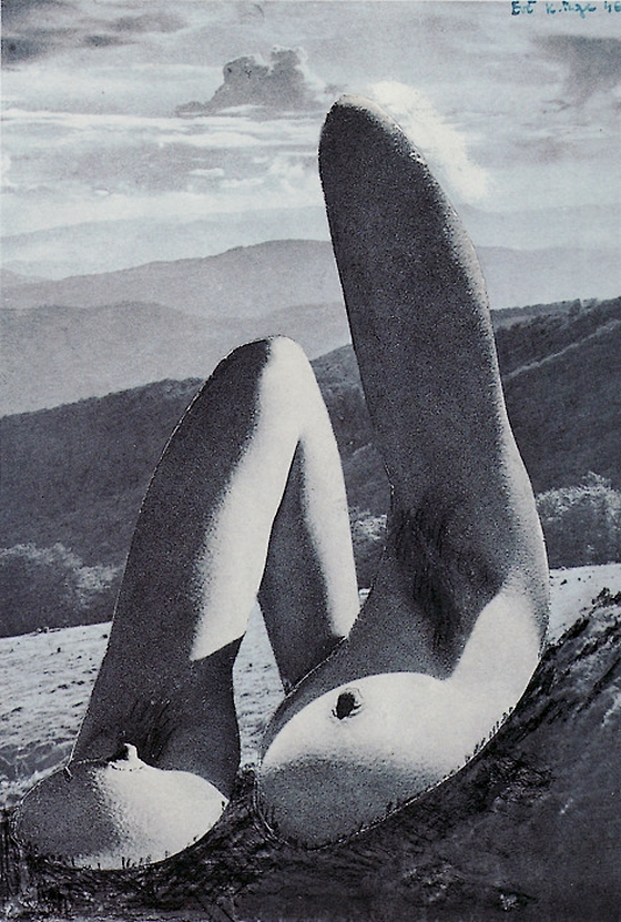 Karel Teige- Collage #315, 1946