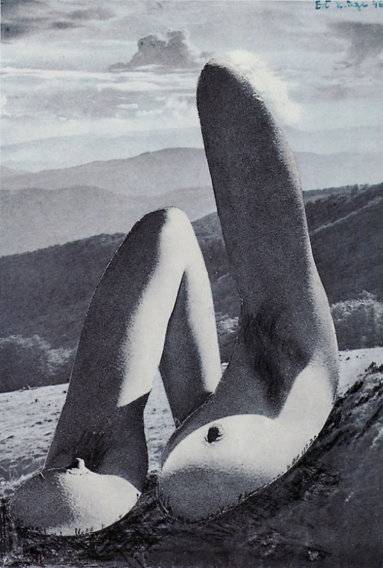 Karel Teige- Collage #315, 1946