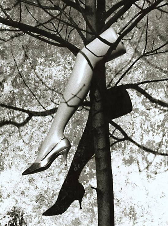 Marcel Marien - Le Fruit Defendu (The Forbidden Fruit), 1992