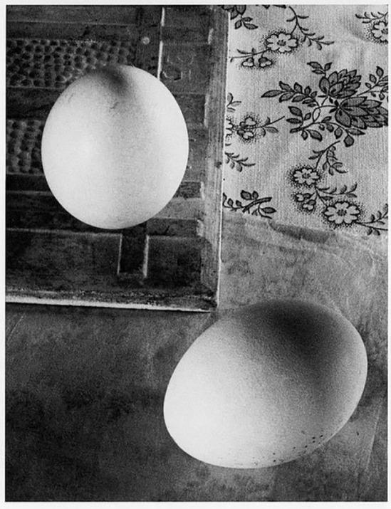 Ringl+Pit Soapsuds, 1931 Copyright Tous droits réservés par ringlandpit
