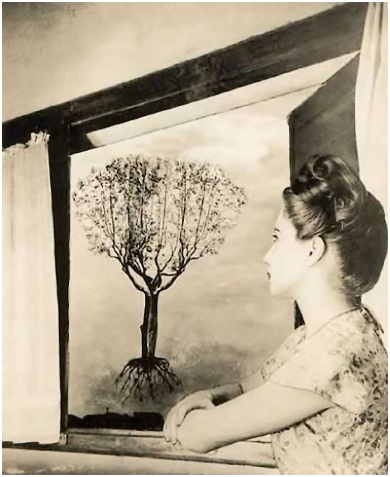 Grete Stern- Los sueños de individuación en  Idilio N º 23, 26 de abril, 1949