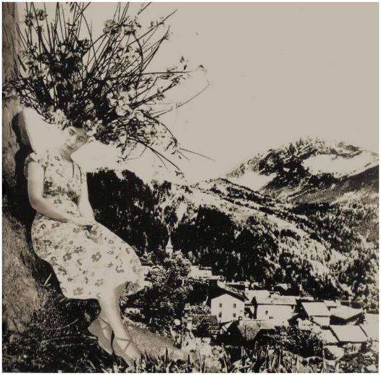 Grete Stern -Sueños  nº 29 Sin título, 1949. Idilio Los sueños de vegetales