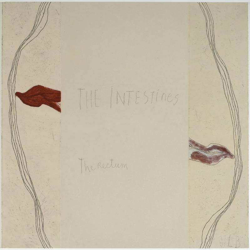 Louise Bourgeois - « The intestins » – « The rectum » panneau 5, The Breathing -The Palpitations -The Hot Flashes Mine graphite sur papier et estampes rehaussées à l'aquarelle, 2007