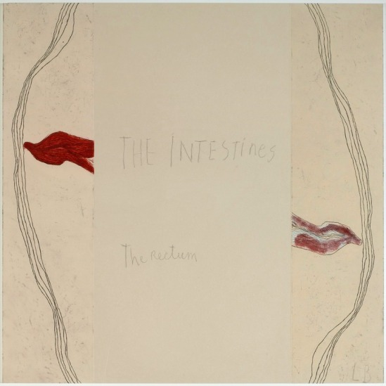 Louise Bourgeois - « The intestins » – « The rectum » panneau 5, The Breathing -The Palpitations -The Hot Flashes Mine graphite sur papier et estampes rehaussées à l'aquarelle, 2007
