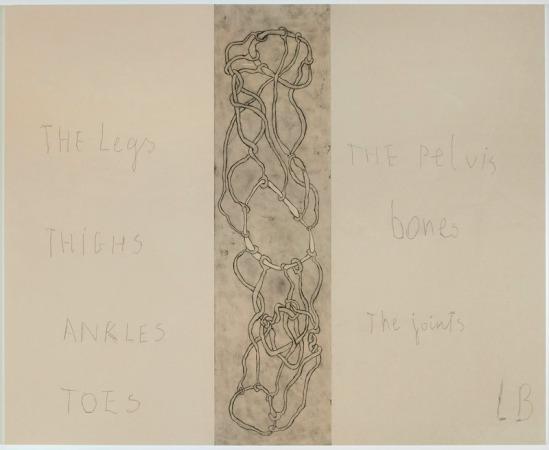 Louise Bourgeois - « The legs » – « Thighs » – « Ankles » – « Toes »… (panneau 7) –Panneau 10 Mine graphite sur papier et estampes rehaussées à l'aquarelle, 2007