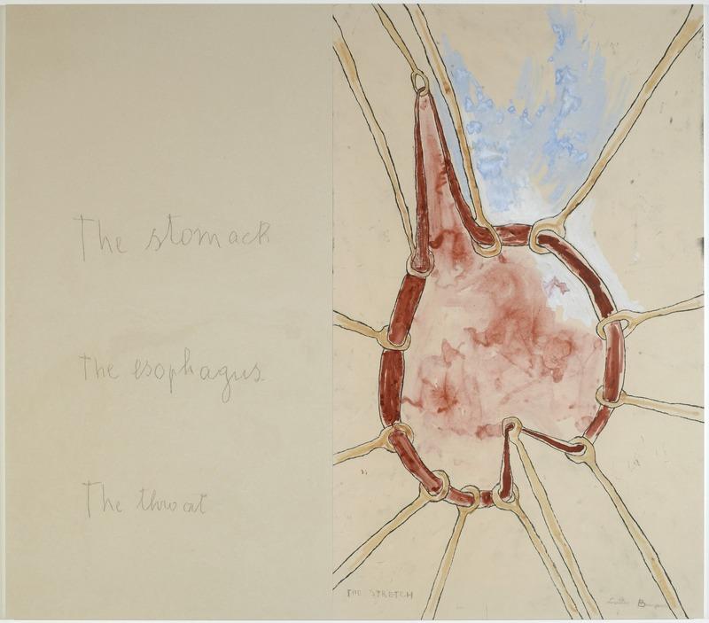 Louise Bourgeois -«« The stomach » – « The esphagus » (panneau 4) ; Mine graphite sur papier et estampes rehaussées à l'aquarelle, 2007