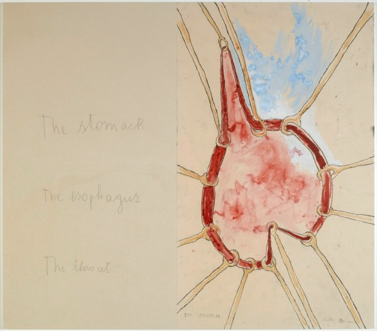 Louise Bourgeois -«« The stomach » – « The esphagus » (panneau 4) ; Mine graphite sur papier et estampes rehaussées à l'aquarelle, 2007