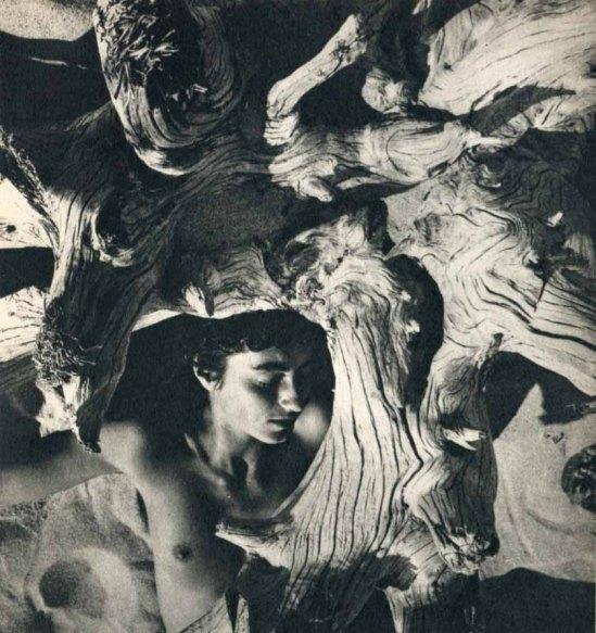 Herbert Matter – Driftwood II, Mercedes Matter ,1940