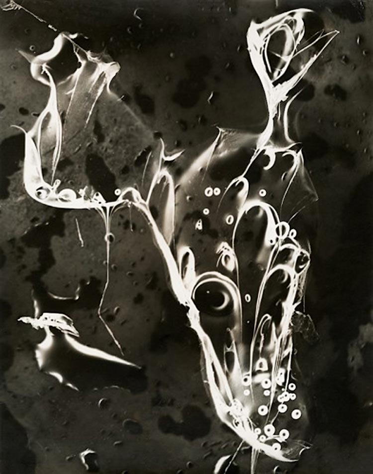 Josef Breitenbach- Huntsman's Luck, photogram , New York, 1946-49,  gelatin silver print  © The Josef Breitenbach Trust