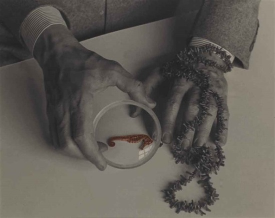 Josef Breitenbach-The Hands of Max Ernst, 1942,     Silver print. Courtesy of mfa © The Josef Breitenbach Trust